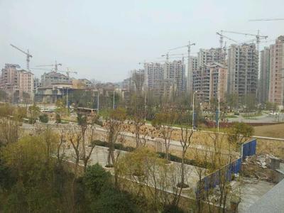 四川省自贡泰丰国际凤凰彩票全天实时计划工程